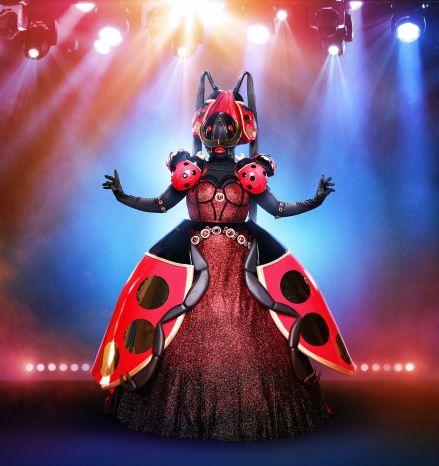masked-singer-who-is-the-ladybug-1569518427